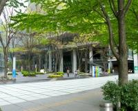 新緑が美しい東京国際フォーラム中庭